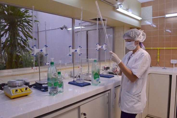 Laboratorio II