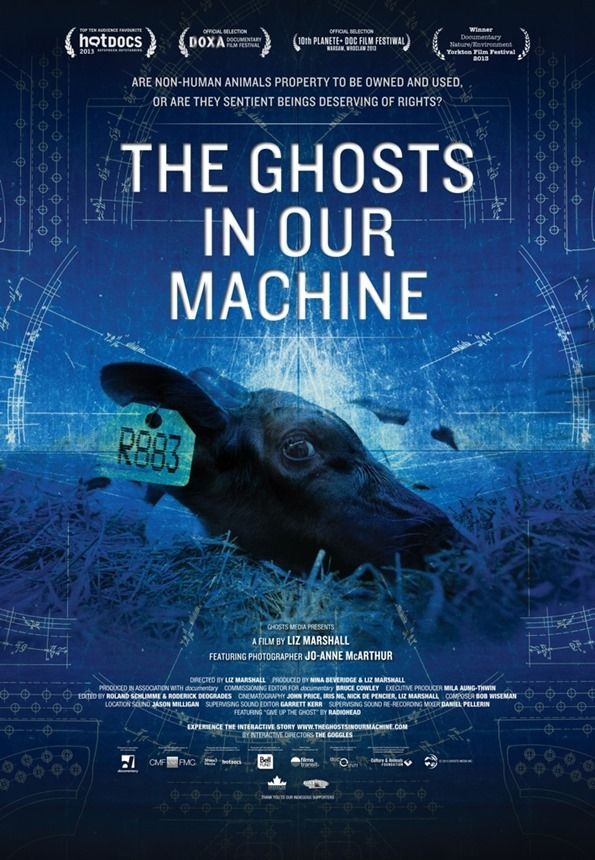 "A must-see animal rights documentary called ""The Ghosts In Our Machine"". Click for more info, plus other things I'm loving this month."