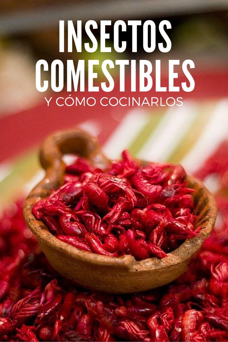 Escamoles, chapulines y otros insectos comestibles y cómo cocinarlos.
