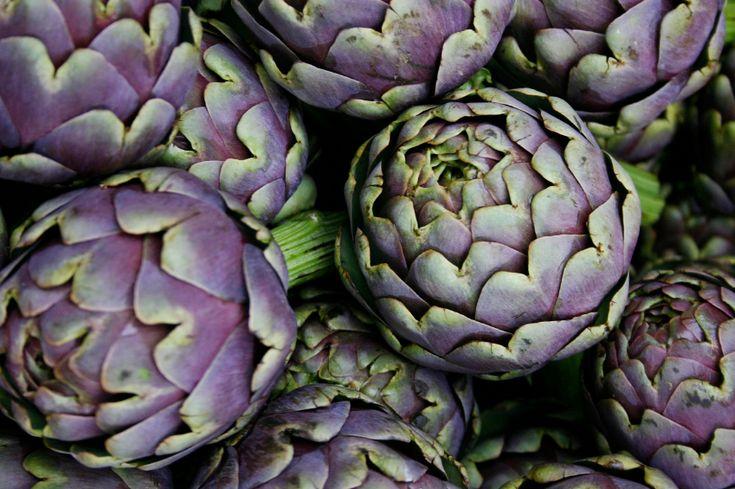 L'Artichaut est l'ami du foie et de la vésicule biliaire. Ses feuilles sont traditionnellement utilisées pour leurs vertus digestives, régulatrices des fonctions hépatiques et biliaires. Il est notamment recommandé en cas de paresse et d'engorgement du foie.