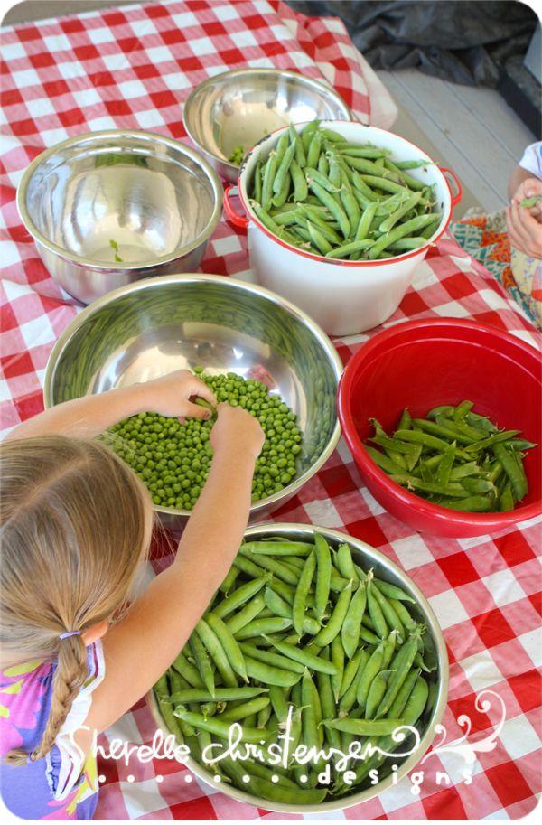 Shelling peas ...