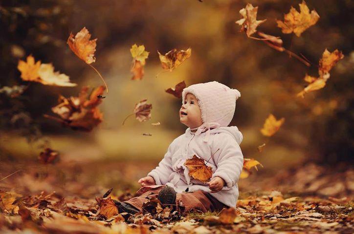 Tombent les feuilles.