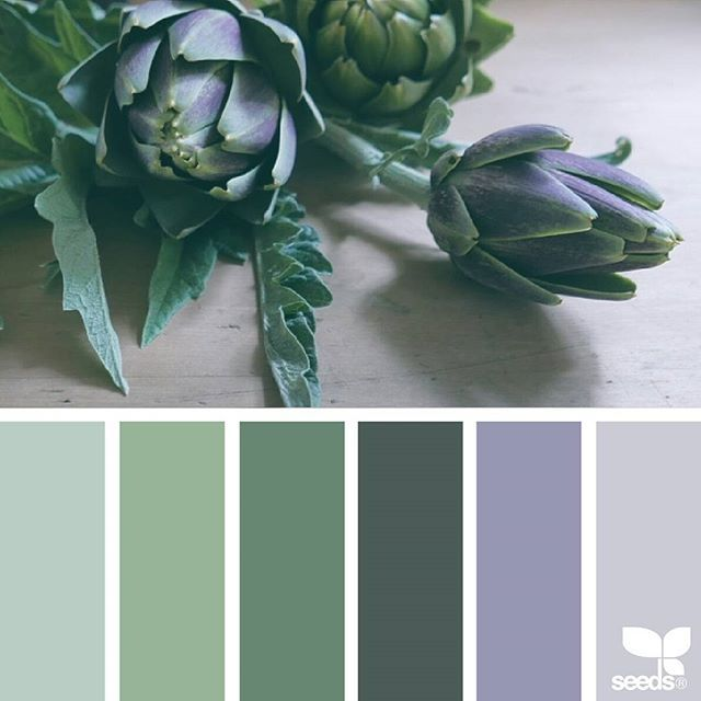 today's inspiration image for { fresh tones } is by @24cherrys ... thank you, Jan, for sharing your wonderful photo in #SeedsColor !