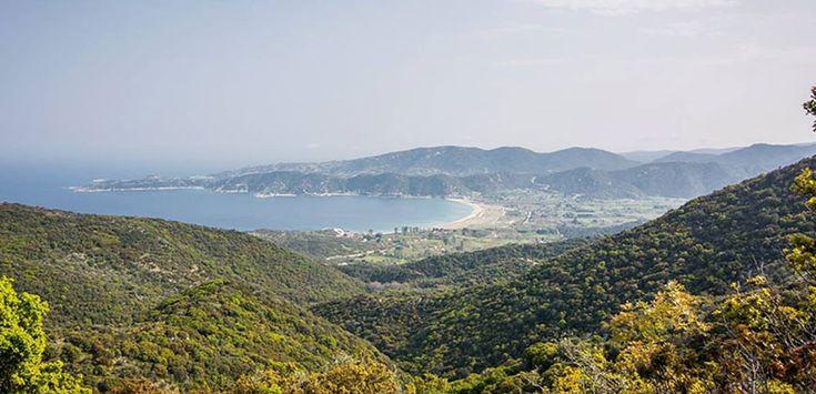 Sykia (Sikia) #Sithonia #Halkidiki #Greece
