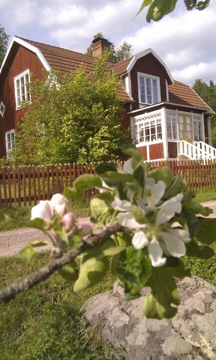 Äppleträd! passar med falurött!:-) Emil's house 'Katthult' in Lönneberga, Småland