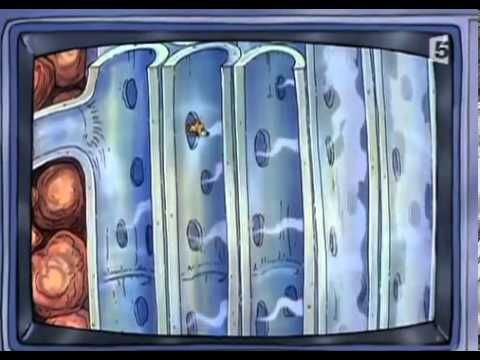 ▶ Le Bus Magique Graine de star - YouTube