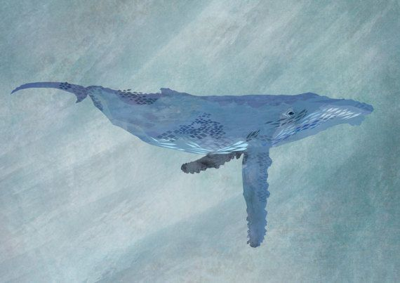 A3 poster  HUMPBACK WHALE by LittleCrochetryShop on Etsy