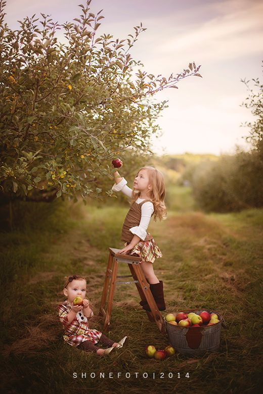 Amazing apple picking photo by @marhoferm, a michigan photographer. Oufits by Persnickety. ShoneFoto.com Fall, apples, apple orchard, persnickety, family photos, 9 month photos, 3.5 years old