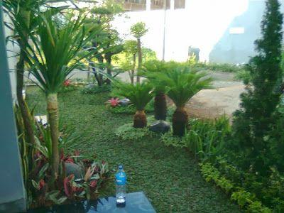 Jasa Professional Pembuatan Taman Rumah, Perumahan, maupun kantor seperti: Taman Minimalis  Taman Kering  Taman Mediterania Taman Bali  Taman Jepang Taman Relief  Taman Gasebo Vertical Garden Kolam Minimalis  Kolam Taman Kolam Water Wall Kolam Koi Interior Paint  Carport Batu sikat dan artistik sejenis lainnya.  Kami juga Menerima Renovasi dan Jasa Perawatan Taman www.pitulast.com 02190589506 081808899505