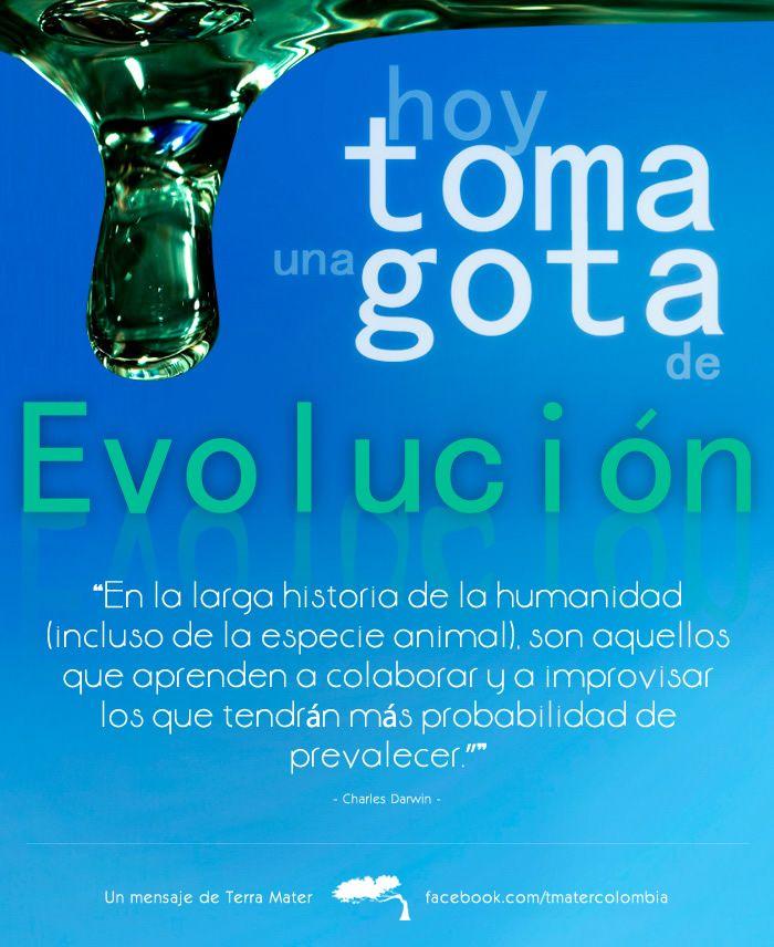 Hoy toma una gota de evolución