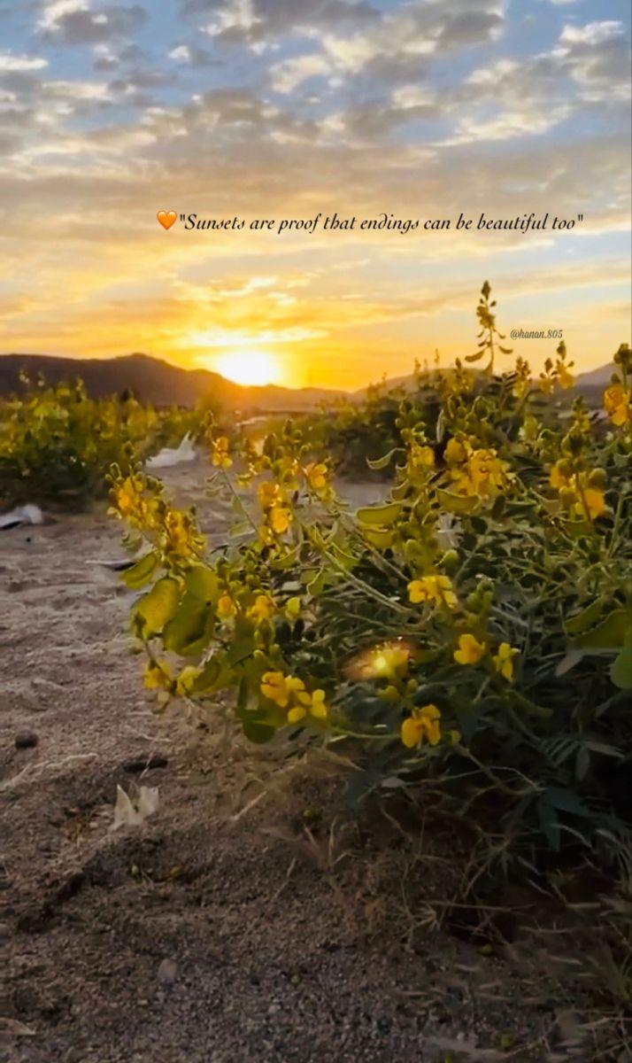 غروب الشمس دليل على أن النهايات قد تكون جميلة ايض ا Natural Landmarks Beautiful Nature
