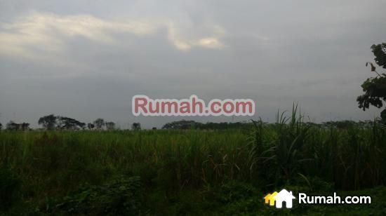 Spesifikasi : Luas tanah: 13000 M2 Lebar depan: 65 M  Harga: 850 Ribu/M2  Yasmin PropertyToday : 0877 1722 1999 >>>>>>>>>>>> : 0812 2444 5515  PropertyToday Inc. Berpengalaman 14 tahun melayani pasar jual beli properti di Indonesia. Layanan opsional: - Konsultan Marketing Properti - Konsultan Developer - Konsultan Arsitek - Kontraktor Bangunan - Jasa penjualan Properti
