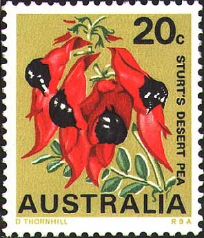 Sturt's Desert Pea stamp • South Australian floral emblem • Adelaide's icons