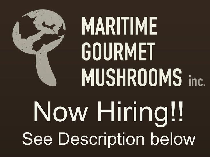 @maritimegourmet IS HIRING  Career opportunity for the right candidate to become part of our fast growing business.  Maritime Gourmet Mushrooms Inc. uses innovative controlled environment farming and specialize in the production of exotic mushrooms. We are seeking a full-time Production Manager to help with all aspects of the companys daily operations including the following:  Grow room management  Harvesting  Packaging  Customer service  Deliveries  Business development  Farmers market sales We