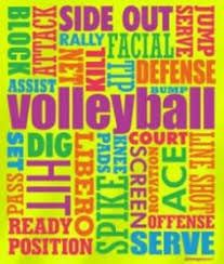 Image result for volleyball terms