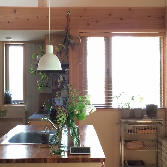 sugomoliさんの、アイランドキッチン,木の家,アーティチョーク,庭の花,花のある暮らし,アレンジメント,ホルムガード,ルイスポールセン,キッチン,のお部屋写真