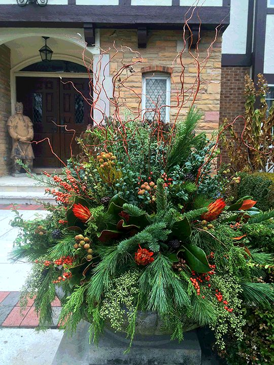 129 best images about winter containers on pinterest christmas arrangements outdoor christmas - Winter container garden ideas ...