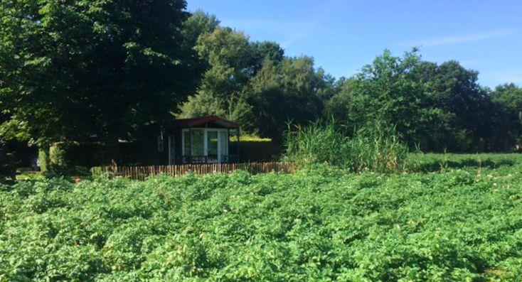 Slapen naast het Pieterpad met wijds uitzicht over de groene Achterhoek
