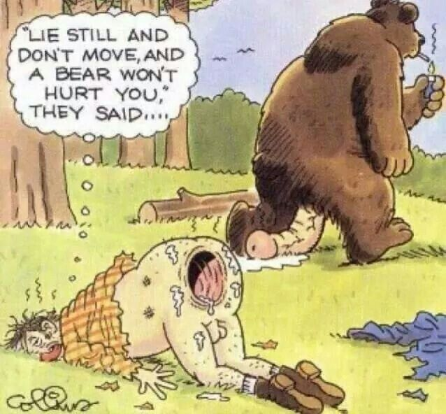 Get BEAR and don't move they said ( what a BUMer !!! )