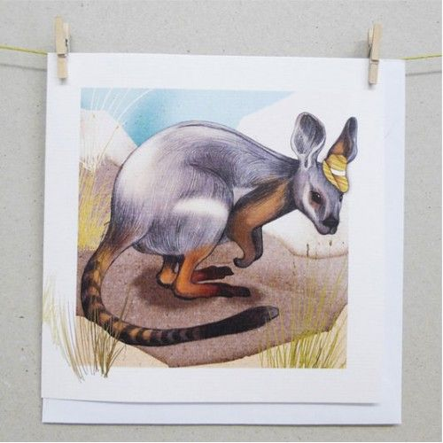 Cards - Yellow Footed Rock Wallaby
