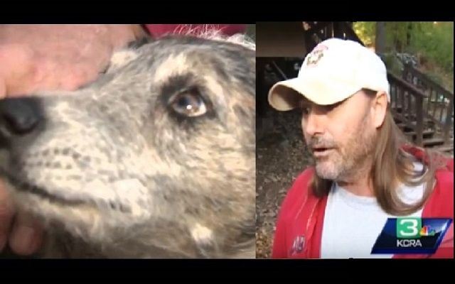 In Placerville California, a man ran outside barely clothed to save his dog who was being attacked by a mountain lion. It happened around 11:30 at night, Kirk Fetter was already in bed when he heard a commotion out on his …