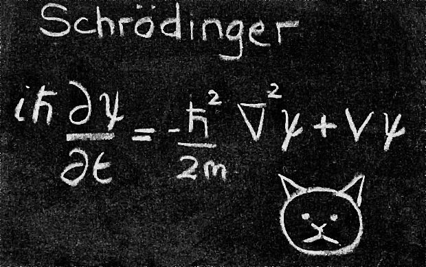 """Schrödinger's Cat.Schrödinger's cat is a thought experiment about quantum physics. Erwin Schrödinger suggested it in 1935, in reaction to the Copenhagen interpretation of quantum physics. Schrödinger stated that if you place a cat and something that could kill the cat (a radioactive atom) in a box and sealed it, you would not know if the cat was dead or alive until you opened the box, so that until the box was opened, the cat was (in a sense) both """"dead and alive"""". An..."""