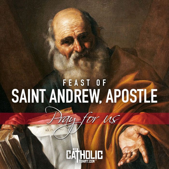 """Today we celebrate the Feast of Saint Andrew, Apostle. #FeastDay #StAndrew #StAndrewsDay  St. Andrew was a native of Bethsaida in Galilee, a fisherman by trade, and a former disciple of John the Baptist. He was the one who introduced his brother Peter to Jesus, saying, """"We have found the Messiah."""" Overshadowed henceforth by his brother, Andrew nevertheless appears again in the Gospels as introducing souls to Christ. #mycatholictshirt"""