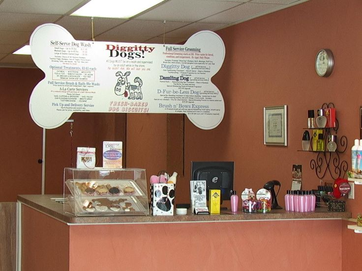 Pinned from cleveland.cityvoter.com. Love the bone shape sign idea at Diggitty Dogs Grooming Salon.