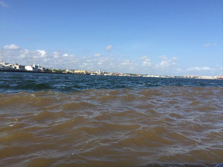 Encontro das águas  verde esmeralda do Tapajós com as águas barrentas do Amazonas. A partir desse encontro, os rios correm juntos, por um bom tempo, sem se misturar.