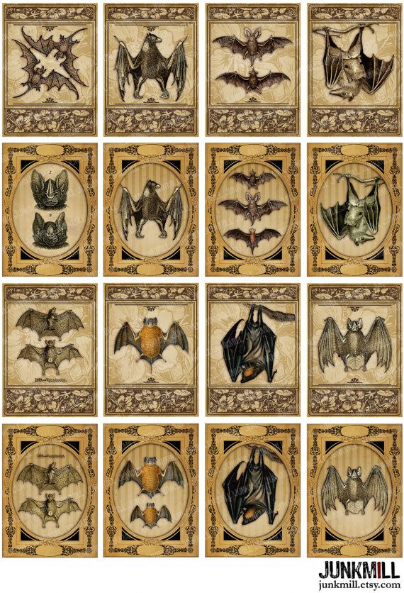 VICTORIAN BATS. Digital Printable Collage Sheet by JUNKMILL, $3.50