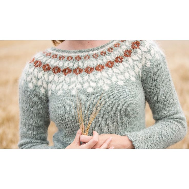 Icelandic sweater, Lopapeysa, made out of Plötulopi yarn, held double. Made by me!