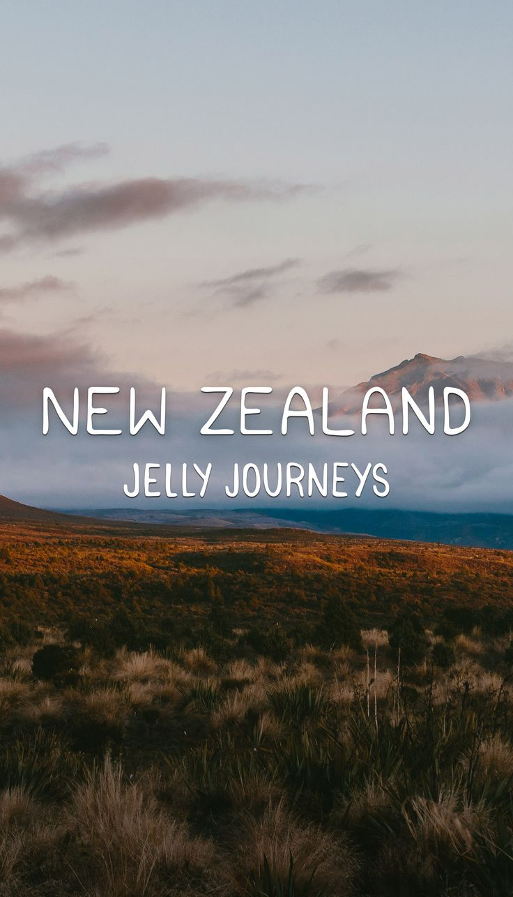 New Zealand had a lot to live up. Spoiler alert: It smashed it. Catch all our photos and info on the places we visited in the North Island!