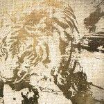 Tiger In City By Ludvig Olsen http://artofevolution.dk