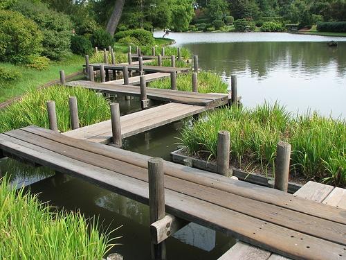 83 best Our Gardens & Conservatories images on Pinterest   Botanical