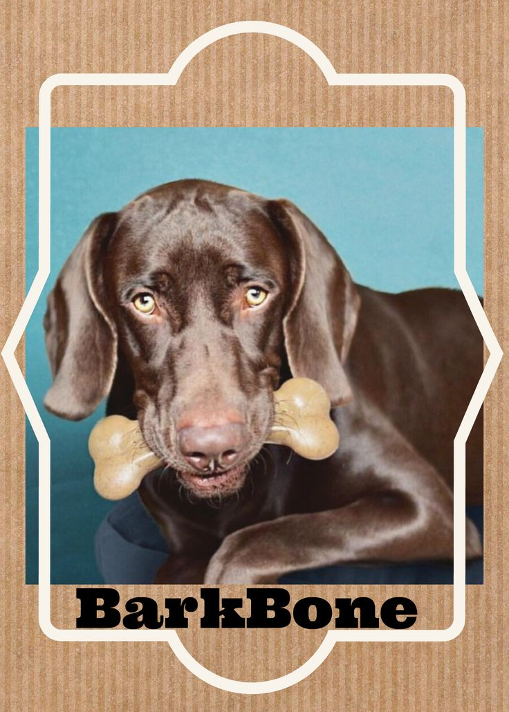 The BarkBones are hefty in size and curved. Easier for your dog to pick up and hold when chewing.