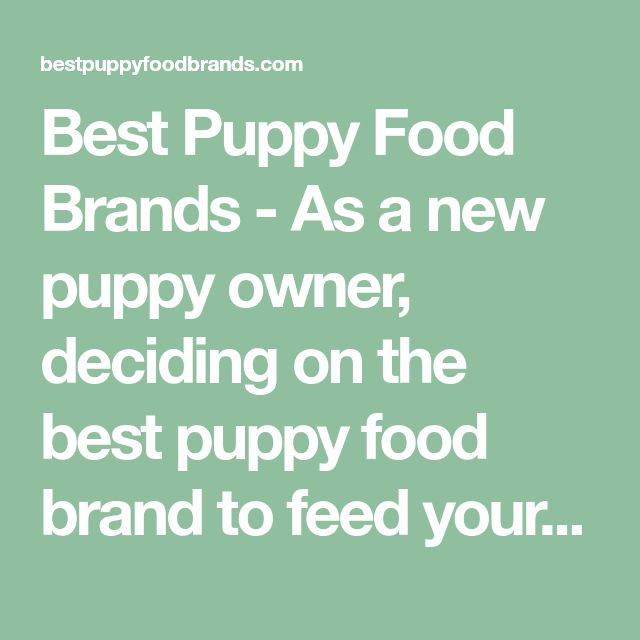 Best Puppy Food Brands - As a new puppy owner, deciding on the best puppy food brand to feed your puppy can be a daunting task - we are here to help!
