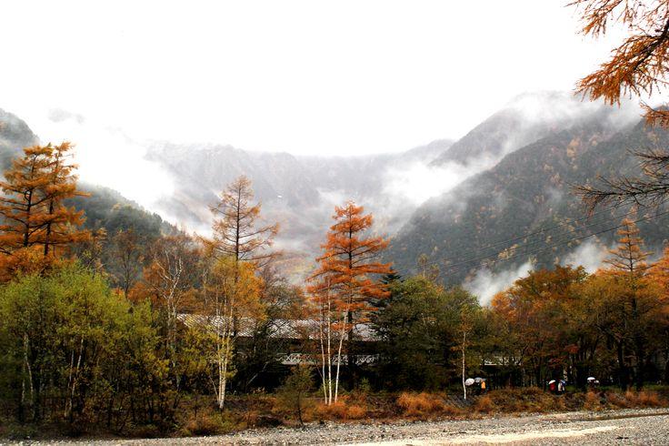 Kamikochi autumn leaves/上高地 紅葉