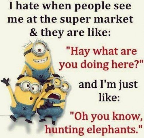 Top 30 Humor Minion Quotes