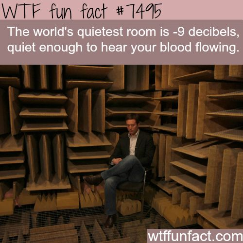 The quietest room in the world - WTF FUN FACTS