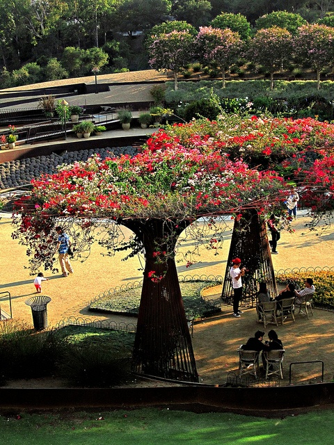 bougainvillea arbors...made from rebar....who wouldn't want one?! by ℙαґḯṧḯ℮ηηε, via Flickr