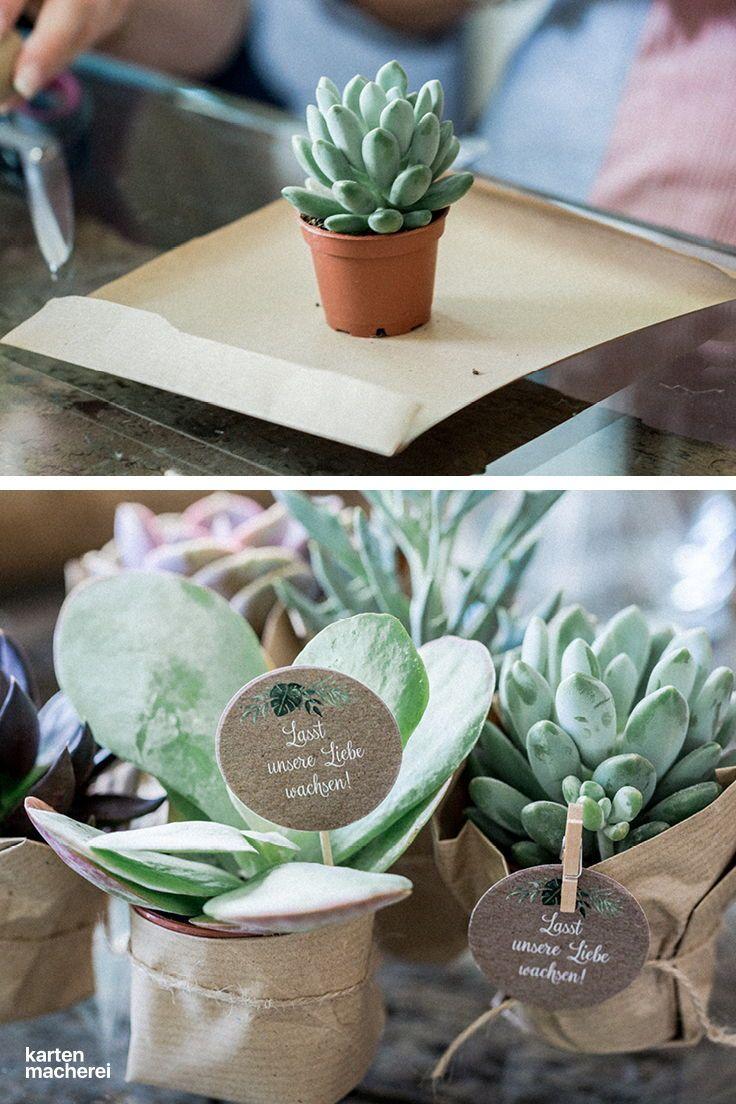 Pflanzen geschenk hochzeit