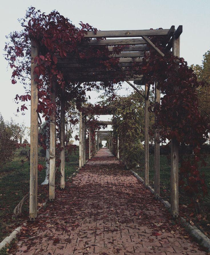 Autumn on University of Karabük