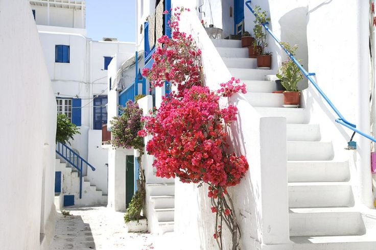 Mikonos Mini Tourist Guide | Sunrise Mykonos Hotel