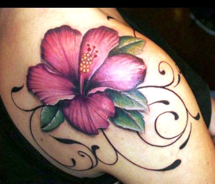 28 Best Hibiscus Flower Tattoos On Shoulder Images On