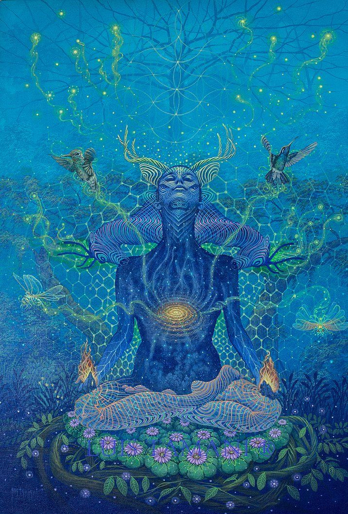 by Luis Tamani Amasifuen. He is a shaman and visionary painter who documents his encounters with the plant teacher, Mother Ayahuasca