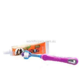 $21.95 Toothbrush & Paste Kit 2pck
