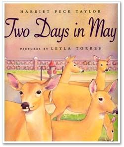Two Days In May - books illustrated by Layla Torres.