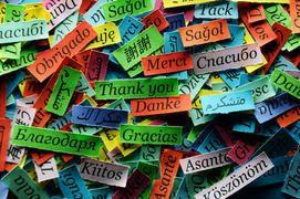 Συνεχίζει και φέτος τη δωρεάν διδασκαλία μαθημάτων ξένων γλωσσών , σε ενήλικες, ο Δήμος Ηλιούπολης, με τη βοήθεια και την ανιδιοτελή προσφορ...