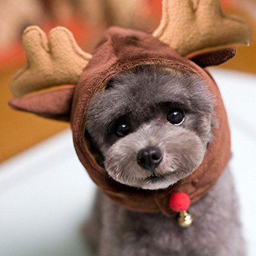 Mkono Dog Cat Pet Christmas/ Halloween Hat Christmas Party  http://www.amazon.com/gp/product/B012N81Z5A/ref=as_li_tl?ie=UTF8&camp=1789&creative=390957&creativeASIN=B012N81Z5A&linkCode=as2&tag=pieofscr0f-20&linkId=UO4CVXS5WKKLHG2W