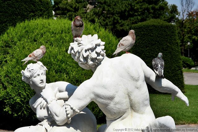Pigeons on a statue - funny side of Vienna, Austria